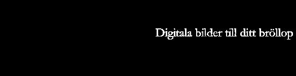 Monogramsidan - Digitala bilder till ditt bröllop
